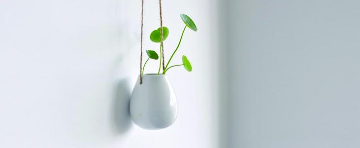 egg shaped flower vase