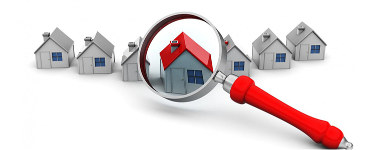 Web Features for Online Real Estate Portal