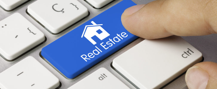 Working of Real Estate Portals