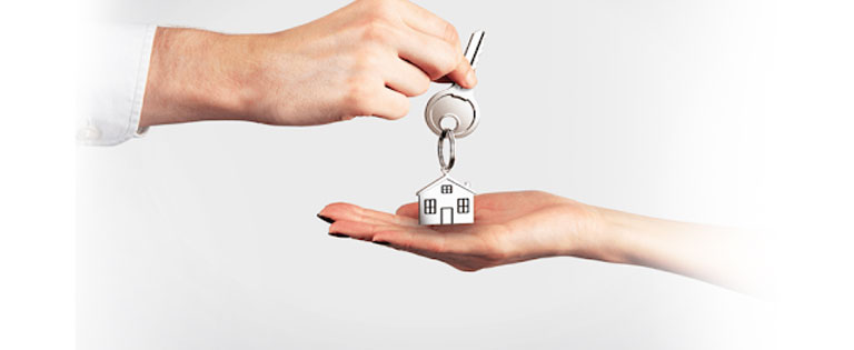 Property Transfer