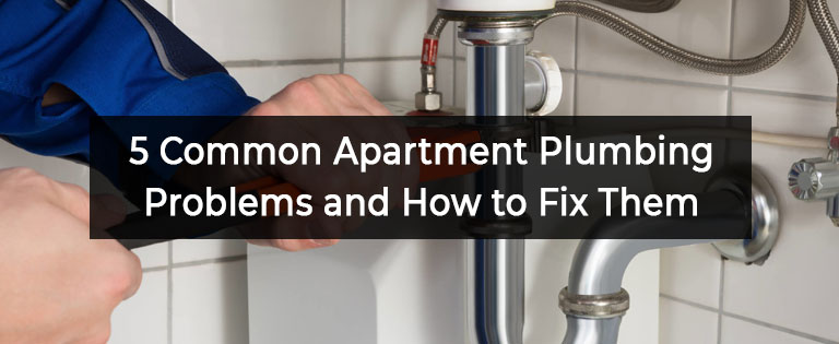 5 Common Apartment Plumbing Problems and How to Fix Them