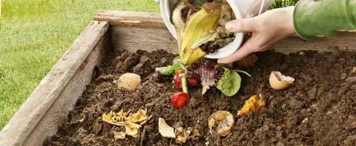 home waste management-Wet-Waste-Management-At-Home