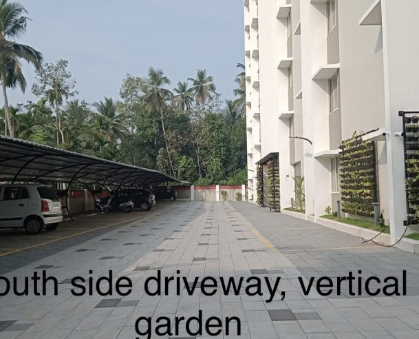 SOUTH SIDE DRIVEWAY, VERTICAL GARDEN : 28-02-2021