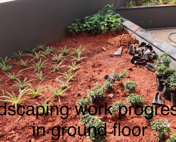 LANDSCAPING WORK IN PROGRESS IN GROUND FLOOR : 31-01-2021