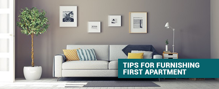 Tips for Furnishing First Apartment