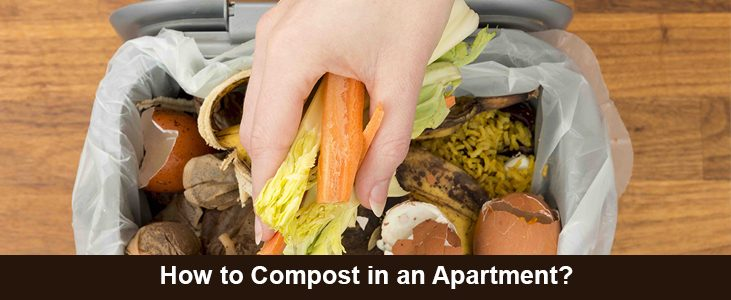 Guide on How to Compost in an Apartment